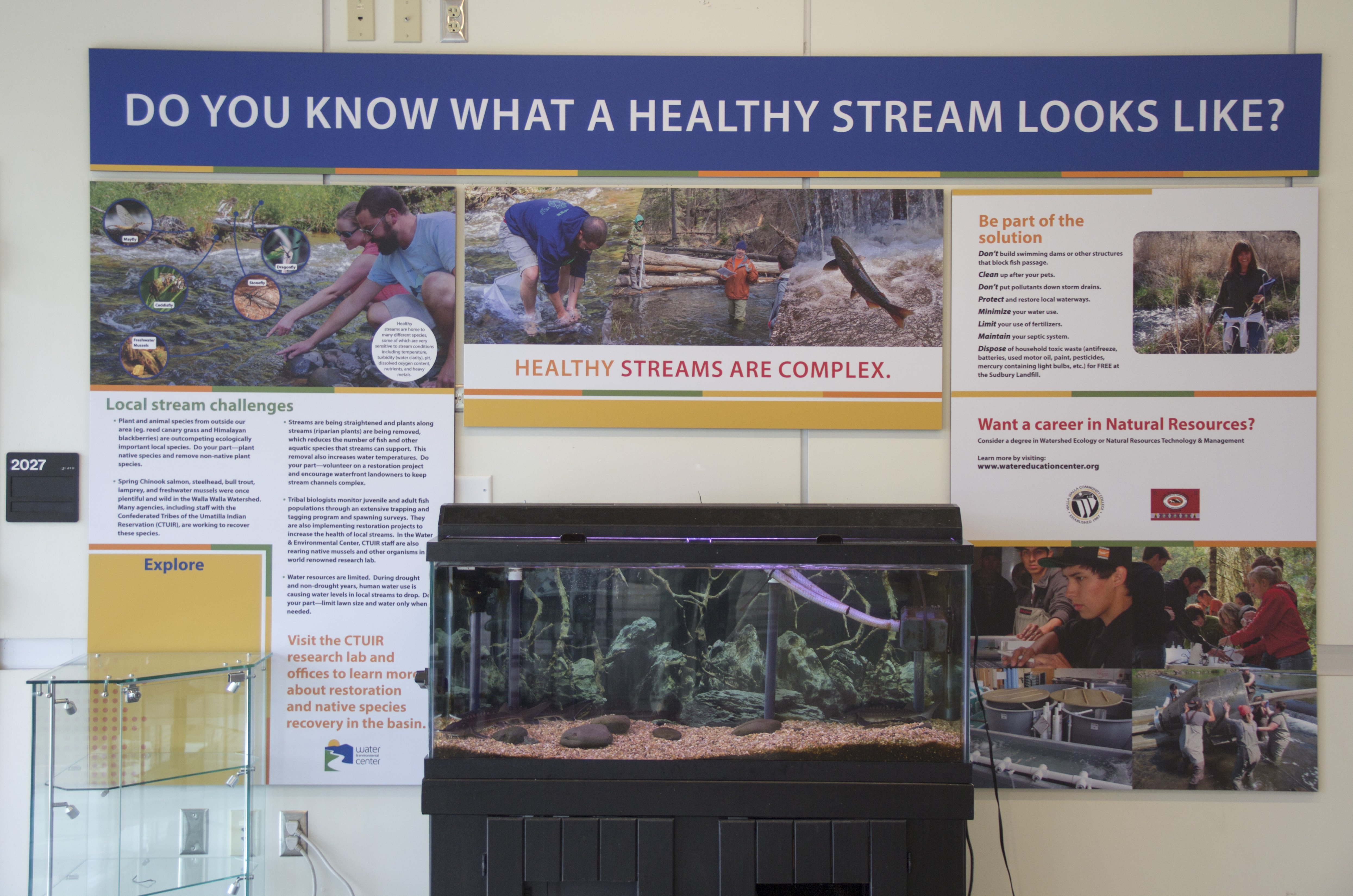 Do you know what a healthy stream looks like? informational station
